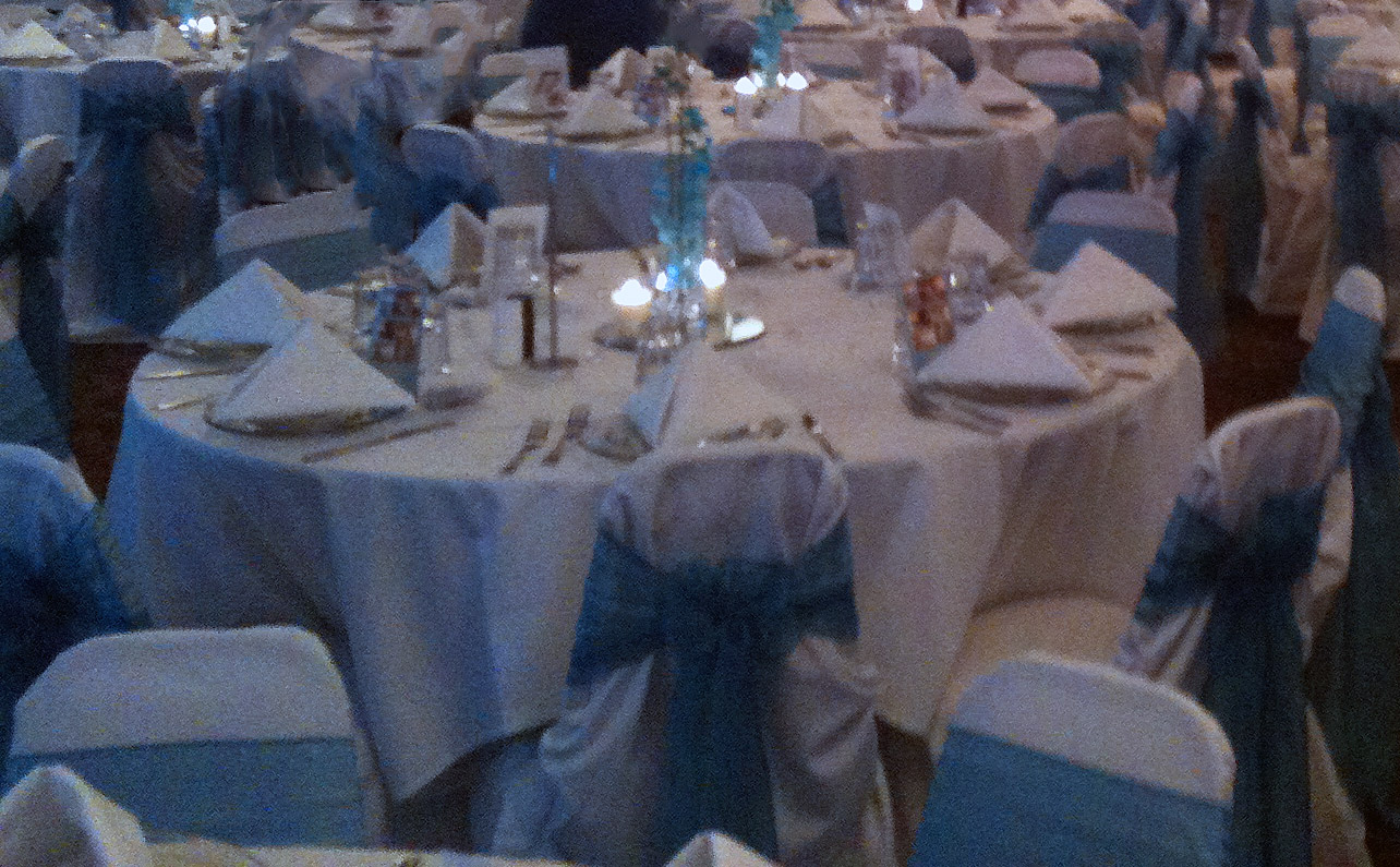 Venetian Club Banquet Hall Wedding Reception Blue2
